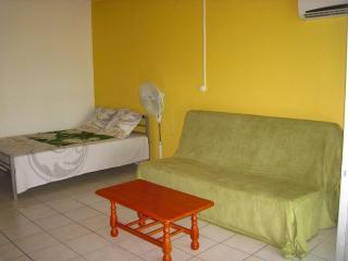 Sunny Studio with Refrigerator and Long Term Rentals Allowed - Le Moule vacation rentals