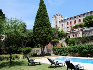Sunny Chateau with Internet Access and Television - Ventenac-en-Minervois vacation rentals