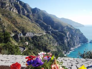VILLA FLORA - Positano vacation rentals