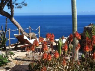 Sa Vinya - Banalbufar vacation rentals