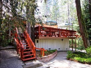 Bill (Sat-Sat) 8p - Yosemite Area vacation rentals