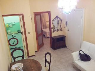 Beautiful, spacious and lovely - Milan vacation rentals