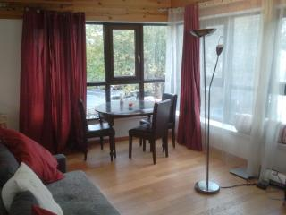 Nice Condo with Internet Access and Balcony - Suresnes vacation rentals