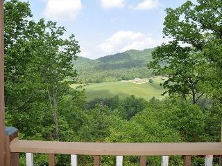 Rustic, Private, Secluded, Amazing Mountain Views, Pet Friendly, Hot Tub - Hiawassee vacation rentals