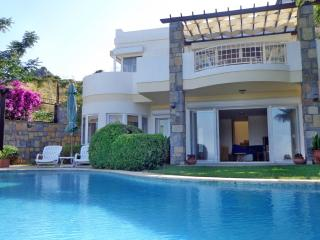 Sea view villa - Golturkbuku vacation rentals