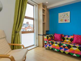 2 Bed Apt short walk to city centre Belfast WIFI - Belfast vacation rentals