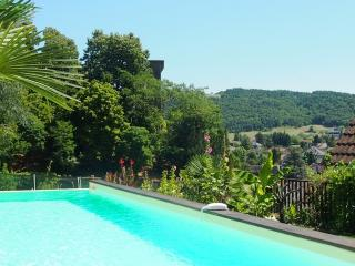 2 bedroom Gite with Internet Access in Montignac - Montignac vacation rentals
