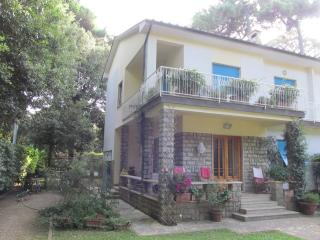 Nice 5 bedroom House in Tonfano - Tonfano vacation rentals