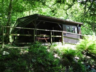 2 bedroom Cabin with Internet Access in Skelwith Bridge - Skelwith Bridge vacation rentals
