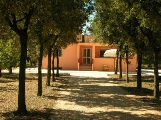 Villa in campagna a 12 km dal mare di Metaponto - Pisticci vacation rentals