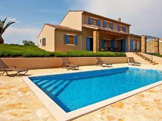 Luxury detached villa RWalker - Buje vacation rentals