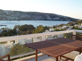 Comfortable 6 bedroom Villa in Gundogan - Gundogan vacation rentals
