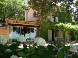 Bastide Blanche - Saint-Antonin-du-Var vacation rentals