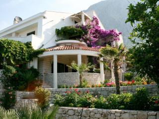 Villa Margitta - Drasnice vacation rentals