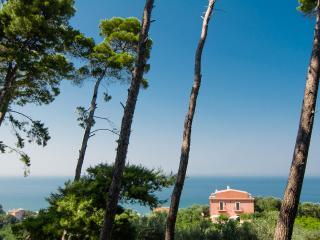 Bright 6 bedroom Farmhouse Barn in Rodi Garganico - Rodi Garganico vacation rentals