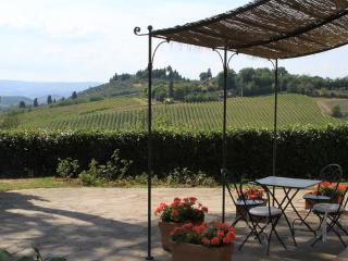 "Apt 9 La Certaldina ""Relax & visit Tuscany"" - Certaldo vacation rentals"