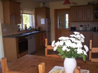 Lovely House with Dishwasher and Stove - Cahersiveen vacation rentals