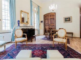 BELLE EPOQUE 3 pièces AIX CENTRE - Aix-en-Provence vacation rentals