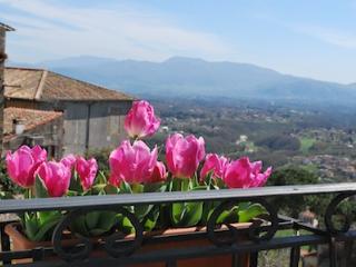 Comfortable 2 bedroom House in Palestrina - Palestrina vacation rentals