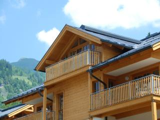 Spacious Penthouse with Internet Access and Hot Tub - Rauris vacation rentals