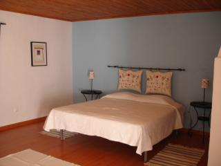 Bright 6 bedroom Santarem Farmhouse Barn with Internet Access - Santarem vacation rentals