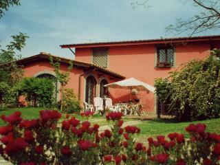 bb ai glicini castelli romani gandolfo ciampino - Castel Gandolfo vacation rentals