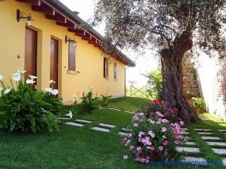 Tenuta Santa Maria Agriturismo - Notaresco vacation rentals