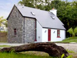 Nice Cottage with Hot Tub and Swing Set - Kenmare vacation rentals