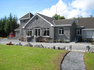 Beautiful 6 bedroom Lodge in Cong with Internet Access - Cong vacation rentals