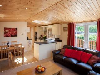 Striding Edge - Windermere vacation rentals