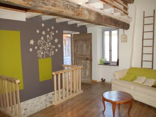 Nice Gite with Internet Access and Satellite Or Cable TV - Courtauly vacation rentals
