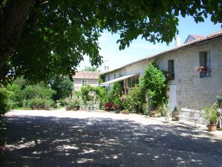 Bright 5 bedroom Guest house in Neuville de Poitou - Neuville de Poitou vacation rentals