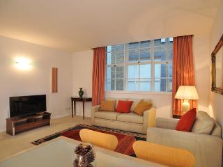 Classy 1 bed apt nr St Pauls/T - London vacation rentals