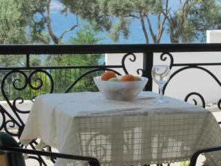 2 bedroom Apartment with Internet Access in Gulluk - Gulluk vacation rentals