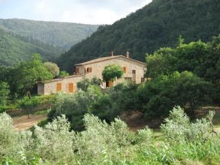 Self-catering app. in stones farmhouse | pool - Casciana Terme vacation rentals