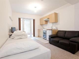 Bright family studio in Swiss Cottage, London - London vacation rentals