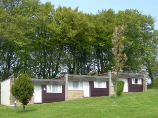 Villa 12 Lanteglos - Camelford vacation rentals