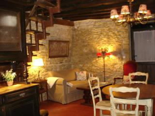 Nice Cottage with Internet Access and Dishwasher - La Charite-sur-Loire vacation rentals