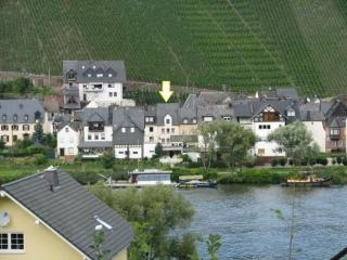 Spacious Holiday Home Zell Merl Mosel - Zell (Mosel) vacation rentals