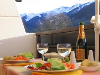 Maria Alm Studio Apartment: Skiing, hiking, biking - Maria Alm vacation rentals