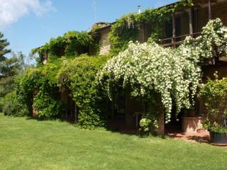 Holiday rental in splendid Tuscan farmhouse with swimming pool and B&B service - Pomarance vacation rentals