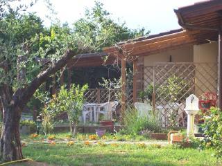 B&B Menica Marta Lago di Vico - Fabrica di Roma vacation rentals