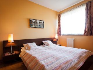 Comfortable Condo with Internet Access and Dishwasher - Krakow vacation rentals