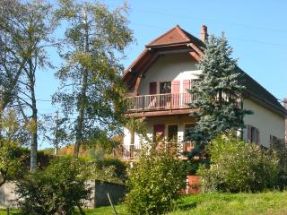 Cozy 3 bedroom House in Arbois - Arbois vacation rentals