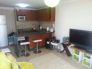 2 bedroom Apartment with Internet Access in Santiago - Santiago vacation rentals