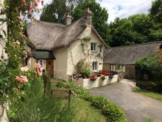 Three Pound Cottage, Lustleigh, Dartmoor - Lustleigh vacation rentals