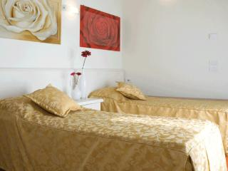 Bright Treviso B&B rental with Internet Access - Treviso vacation rentals