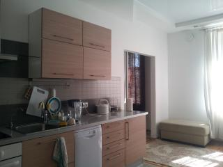 Lux 1BR in the old town Vyborg - Saint Petersburg vacation rentals
