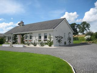 Cozy 3 bedroom Bungalow in Tullamore - Tullamore vacation rentals