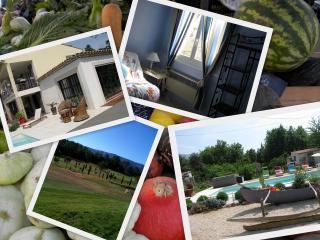 Nice Villa with Internet Access and Garden - Nans-les-Pins vacation rentals